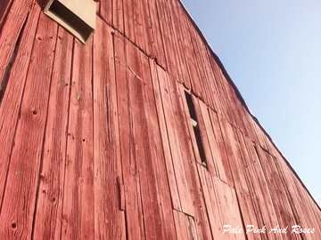 Tobacco Barn - 3