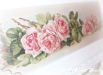 Paul De Longpre Yard Long Pink Roses